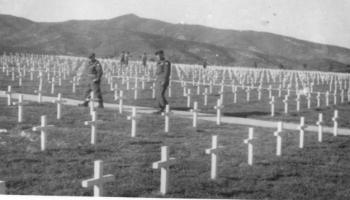 Red Deer Archives, E2733; Cemetery in Korea, likely the Canadian section of the UN cemetery in Pusan, South Korea, between 1950-1953