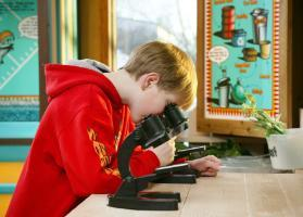 A fourth grade boy looks through a microscope at the Waste Management Facility's Interpretive Centre.