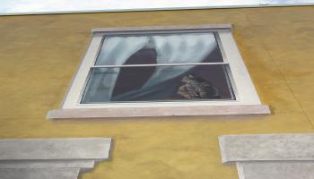 Paited mural on the side of a buidling of an apartment window with white curtains and a cat sittin on the window ledge.