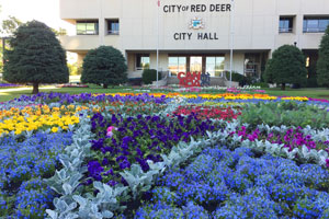 Photo of flower beds with City Hall in the background